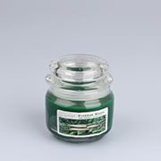 dk Candle 210g -forest rain 0/24