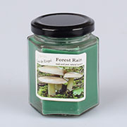 dk Candle 160g - forest rain 0/32