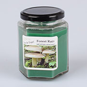 dk Candle 210g - forest rain 0/32