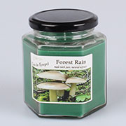 dk Candle 260g - forest rain 0/24